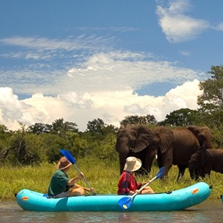 Zambezi River Safaris